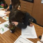 Student drawing cactus in art class