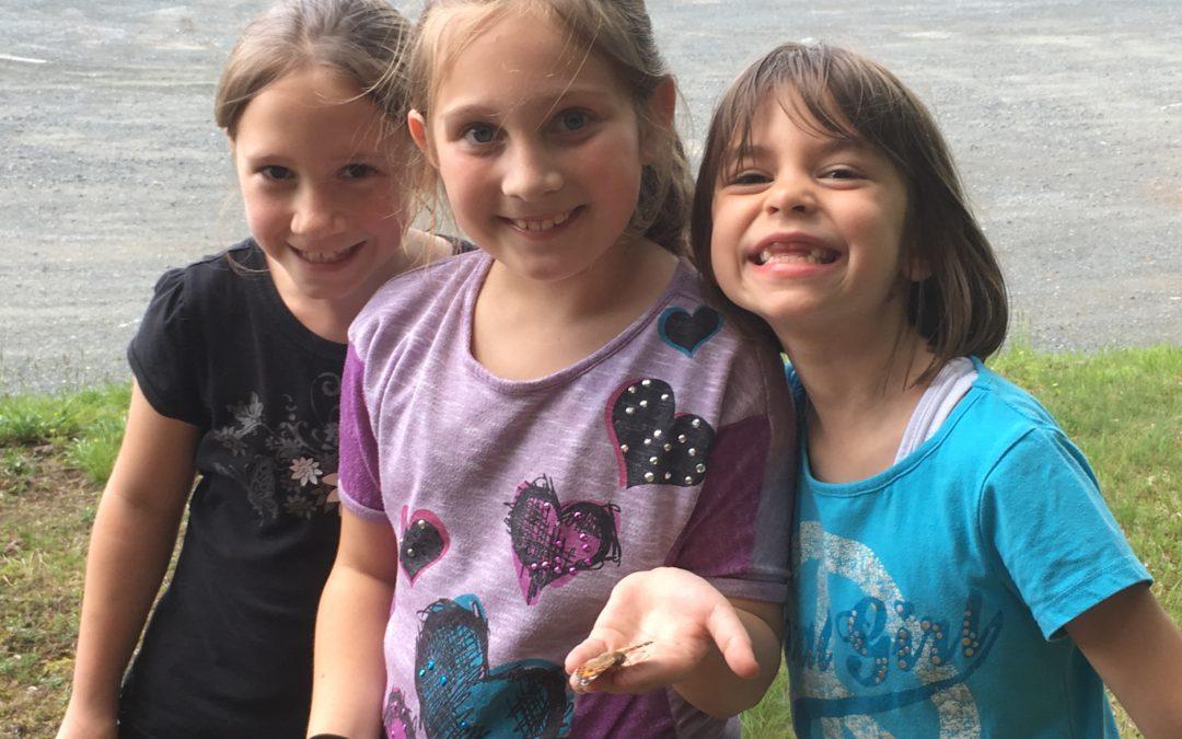 Students Release Butterflies