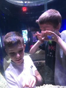 STudents Visit Aquarium