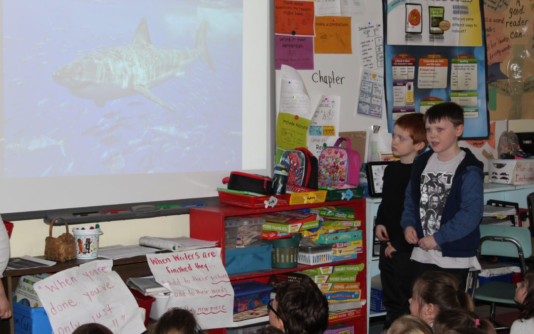 First Grade Students Create Presentations Using Google Slides