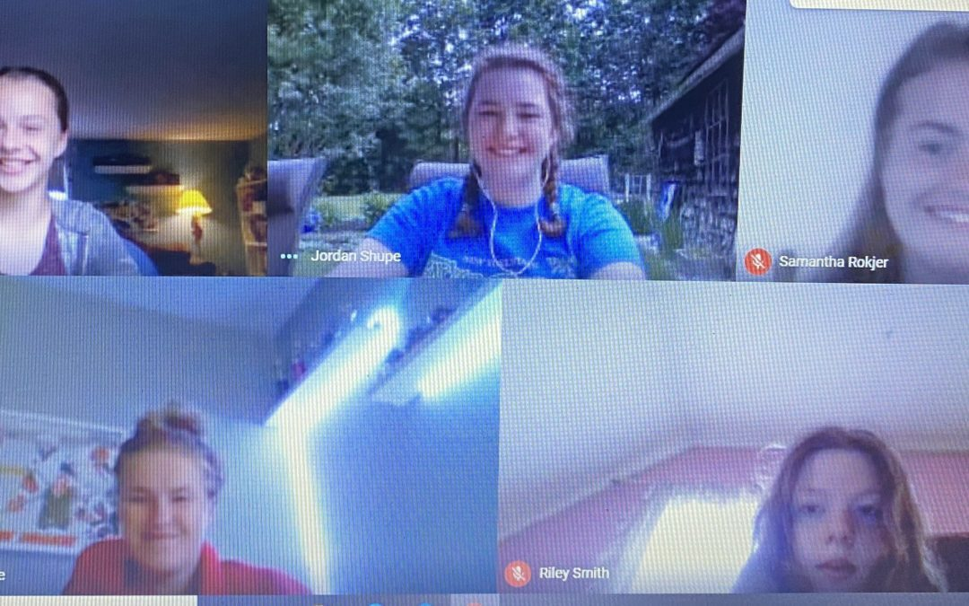 BCSD Competes Remotely in NYS Envirothon