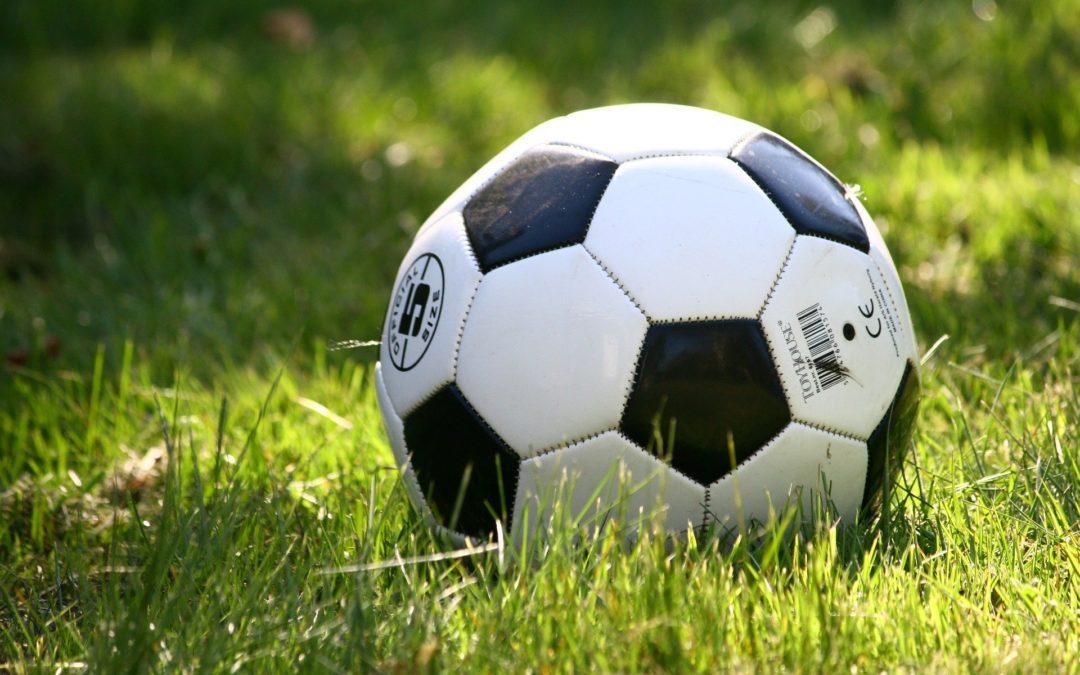 Wasaren League Postpones Fall Sports